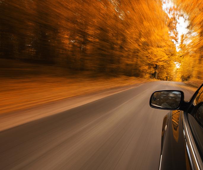 miniature-conseils-de-conduite-en-automne